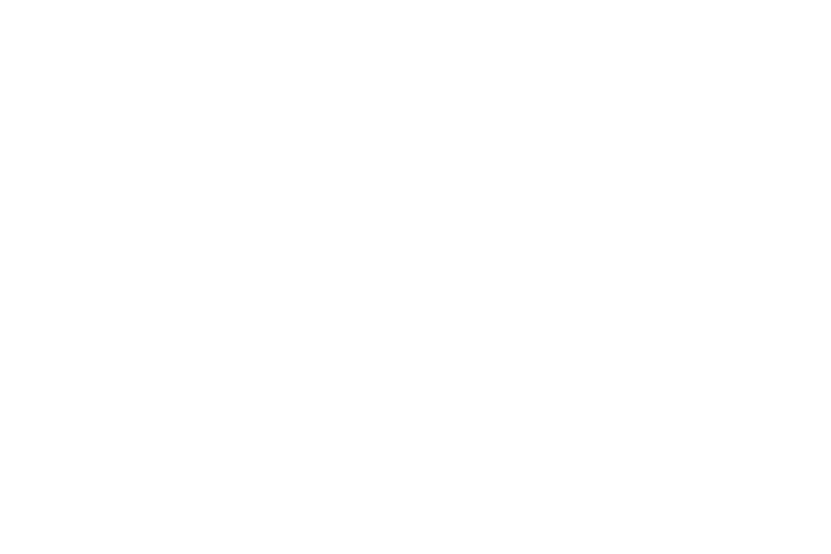 Little Giant Brewery (LOGO)